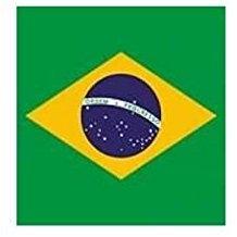20 Einweg Servietten ,, Brasil,,Vlies, 25 x 25 cm ausgeklappt  (Guardanapos descartáveis)